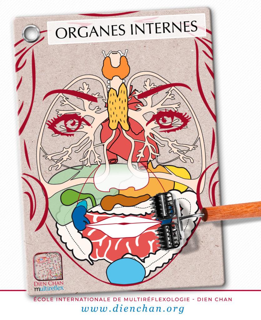 Organes internes sur le visage