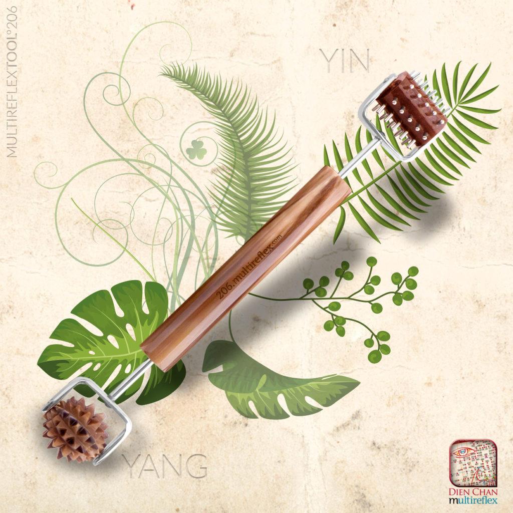 Outil du Dien Chan pour un soin naturel de la peau