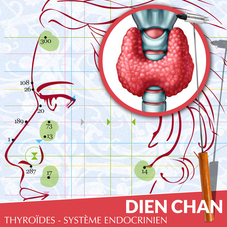 Thyroïdes en Dien Chan
